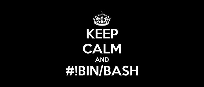 #!BIN/BASH